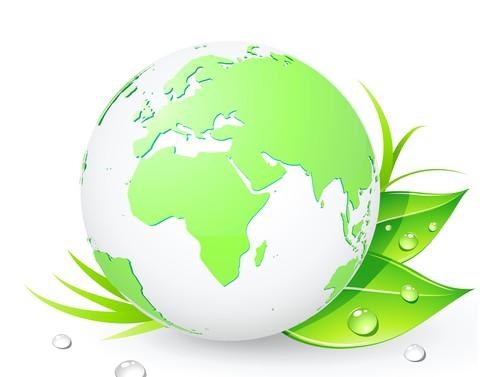 The Environmental Impact Of Going Organic