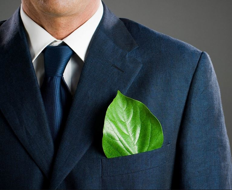 Green and Clean: How Your Business Can Be Environmentally Friendly