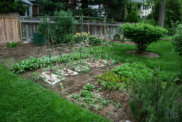 Hints On Landscaping A Dreamy Organic Garden