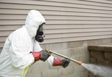 Expert Pest Controllers London In Your Service