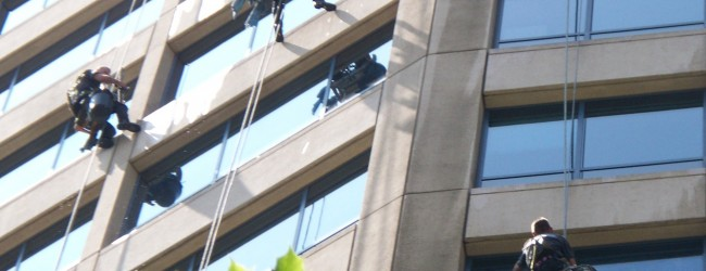 What To Bear In Mind While Purchasing Window Cleaners