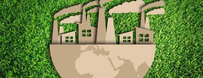 Going Green: 4 Ways Your Business Can Be Eco-Friendly