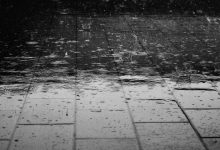 Wet Weather: How to Deal with Rain-related Business Problems