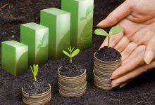 Clinically Diagnosing The Economy