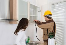 Why It Counts To Have Professional Pest Control Services